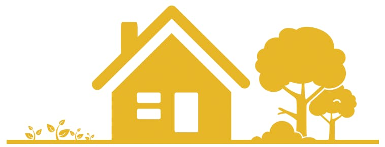 dust allergens in the home