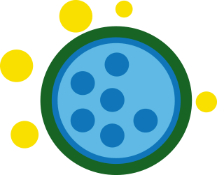 FLONASE® Allergy Relief acts on multiple inflammatory substances including histamine, prostaglandins, cytokines, tryptases, chemokines, and leukotrienes.