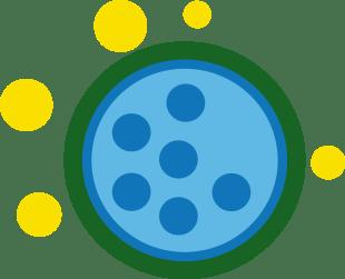 FLONASE® Soulagement des allergies agit sur de multiples substances inflammatoires dont l'histamine, les prostaglandines, les cytokines, les tryptases, les chimiokines et les leucotriènes.