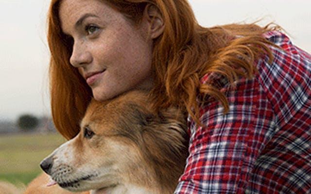Une fille fait un câlin à son chien dans un pré et elle n'a aucun symptôme d'allergie