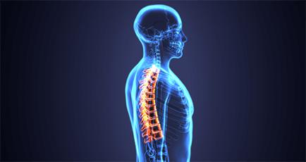 UNDERSTANDING UPPER AND MIDDLE BACK PAIN