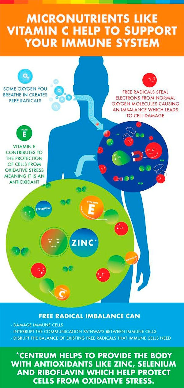 Infographic about immune system.