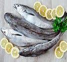 Pescado (Bacalao y Atún)