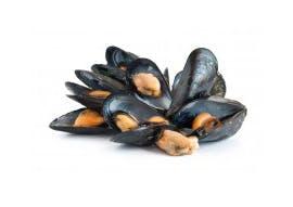 Fruits de mer (bigorneaux, palourdes, …)