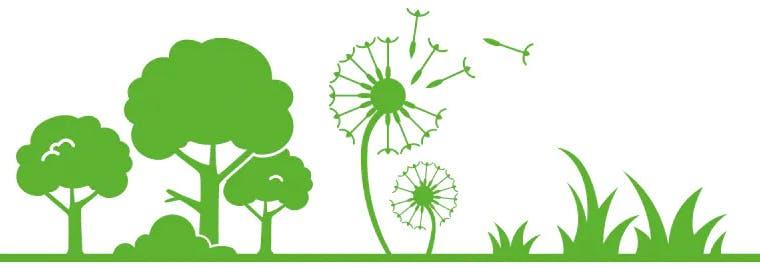 tree pollen, ragweed pollen, and grass pollen allergies
