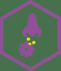 breathing in allergens like pollen, pet dander, dust, and mold