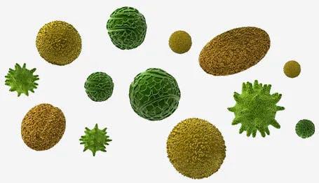 Hay fever molecules