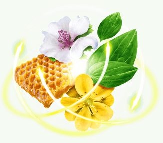 Ingredientes del jarabe para la tos