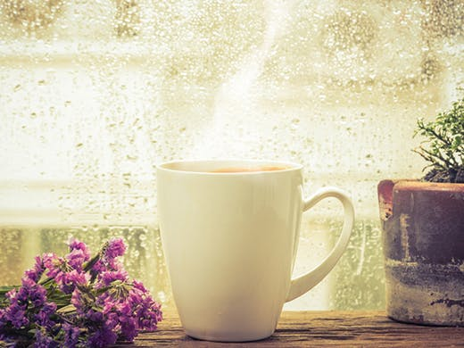 5 AT-HOME REMEDIES TO HELP YOU KICK THAT COLD