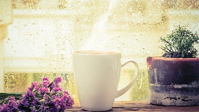 Mug of hot tea, herbs