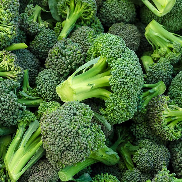 Close up of a pile of broccoli.