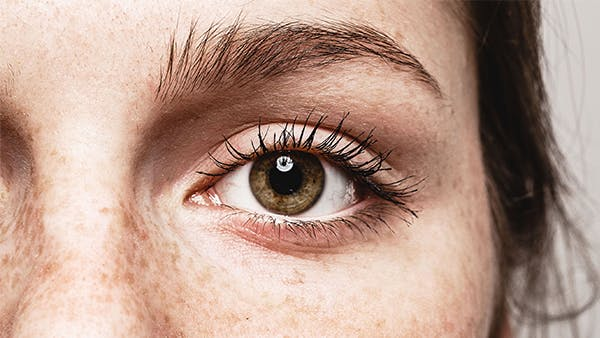 Closeup of a woman's eye and eyebrow