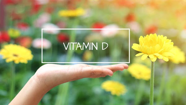 Hand lifting a rectangle that says 'vitamin d' in a field of yellow flowers
