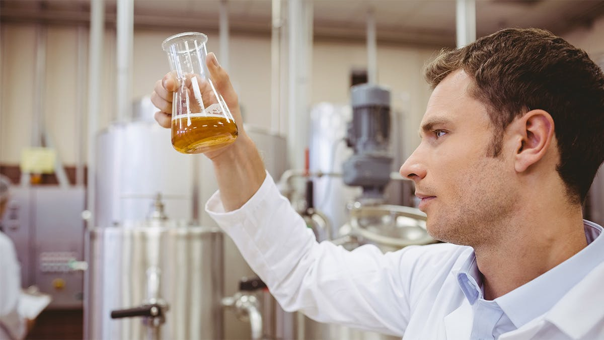 Man looking into erlenmeyer flask