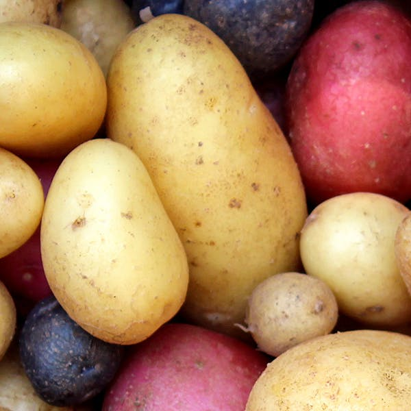 potatoes images