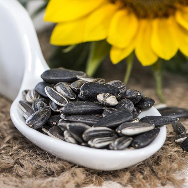 Sunflower Seeds Image