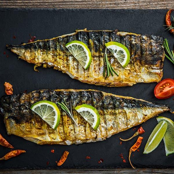 mackerel image