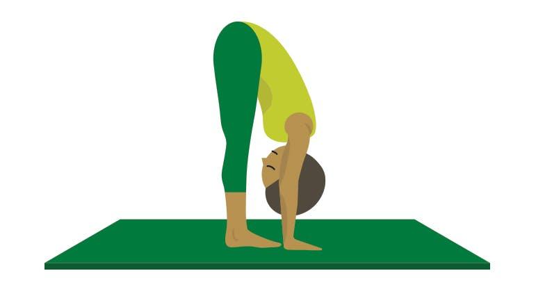 Forward Fold Yoga Pose Illustration