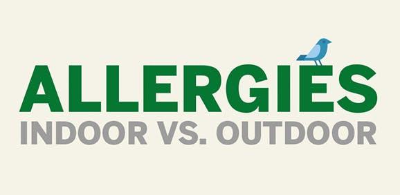 Indoor VS Outdoor allergies