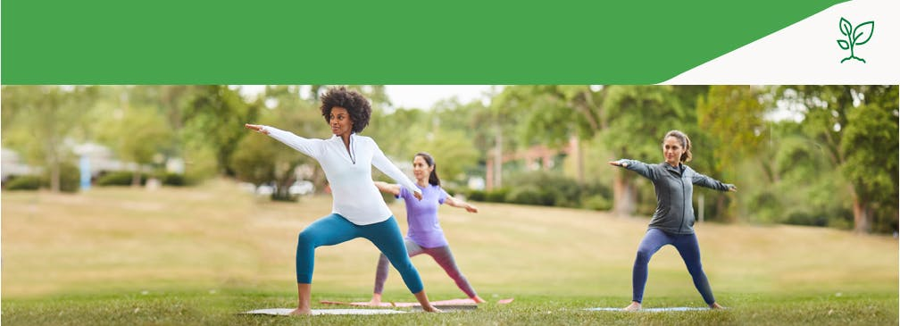 Women doing yoga in the park in the spring