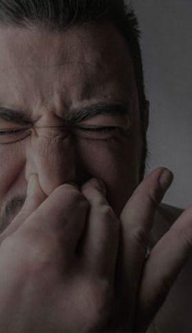a gripe não ocorre apenas em invernos frios e chuvosos