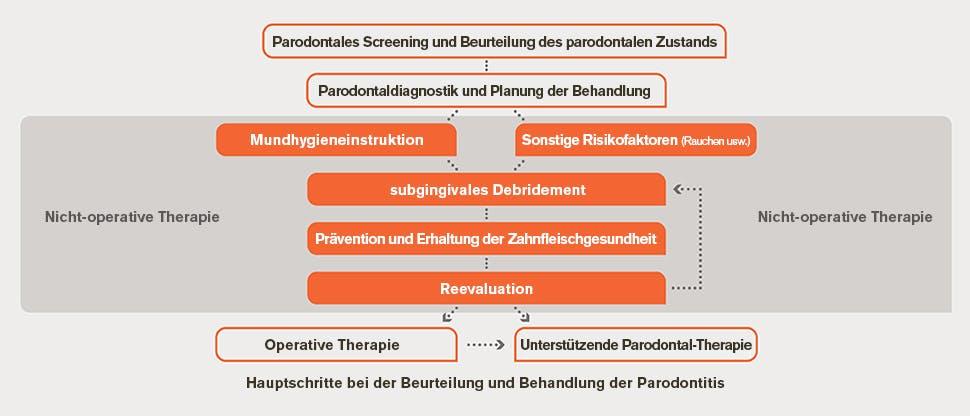 Flussdiagramm für die Beurteilung und Behandlung der Parodontitis