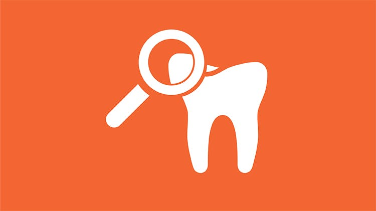 Tooth with magnifying glass icon