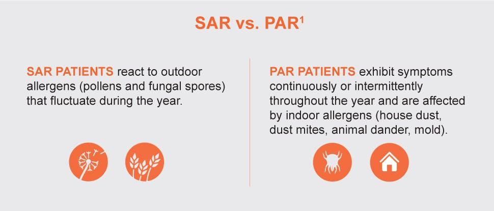 Seasonal and perennial allergic rhinitis