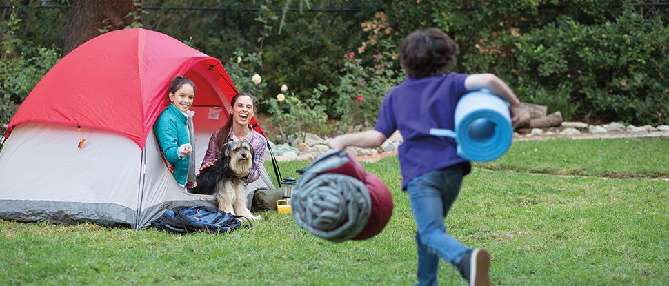 Family camping with dog