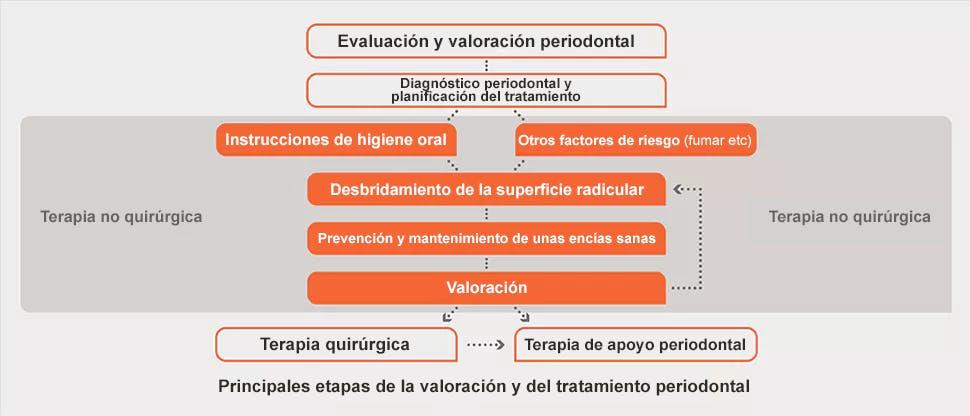 Evaluación periodontal y gráfico de tratamiento