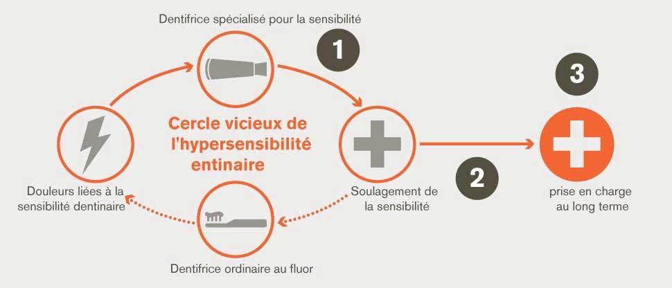 Cycle de récurrence de l'hypersensibilité dentinaire et objectifs de la prise en charge