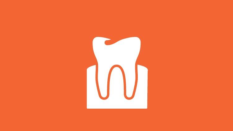 歯と歯肉のアイコン