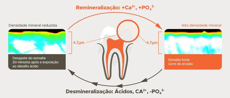 Processo de desmineralização e remineralização 20 minutos após a exposição ao desafio ácido