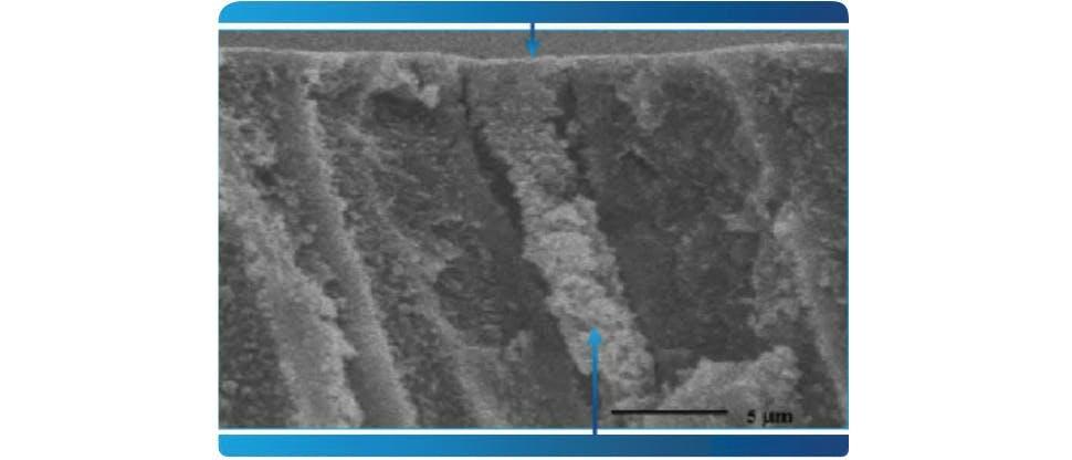 Imagem FIB-SEM representativa dos túbulos dentinários