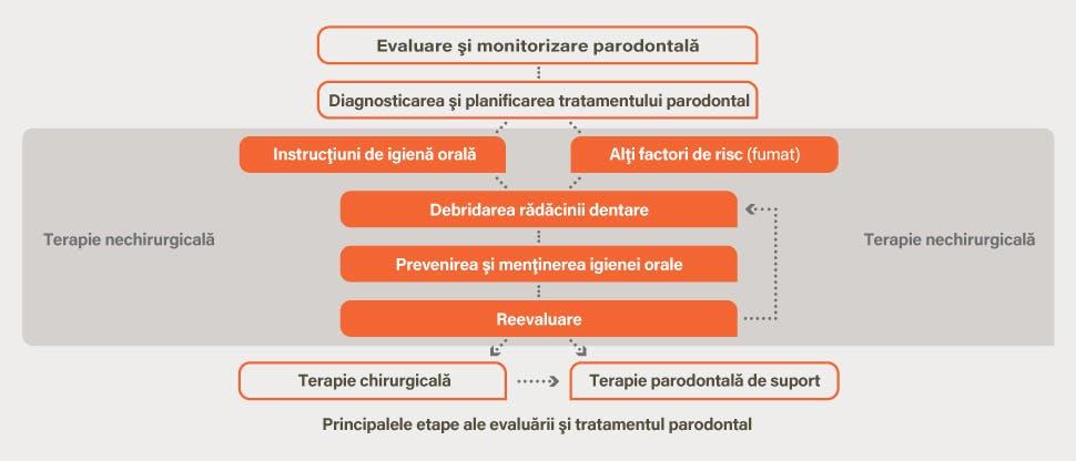 Evaluarea parodontitei şi diagrama de tratament