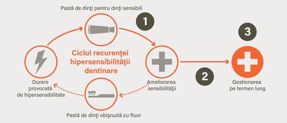 Ciclul recurenţei hipersensibilităţii dentinare şi obiectivele gestionării acestei afecţiuni