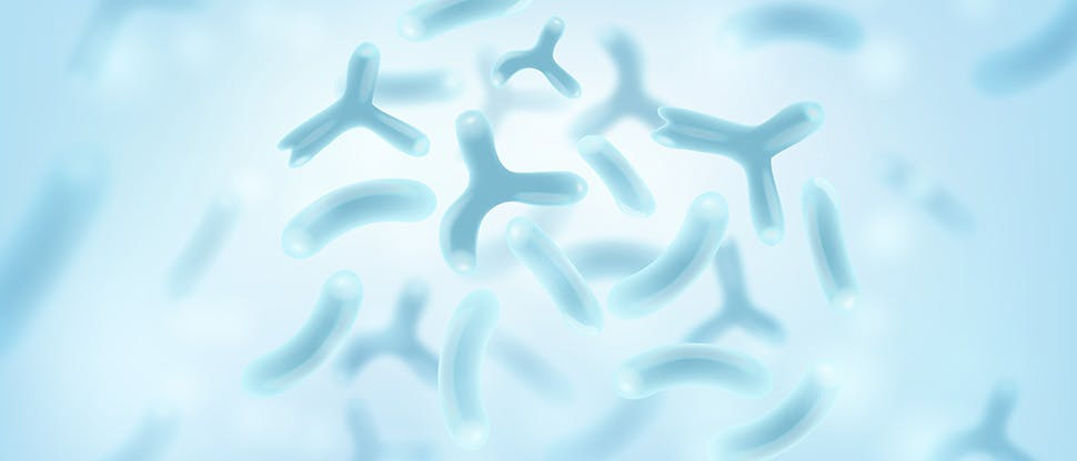 bacterias-probiotic-microscopic-microorganisms