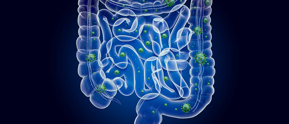 human-bowel-with-virus