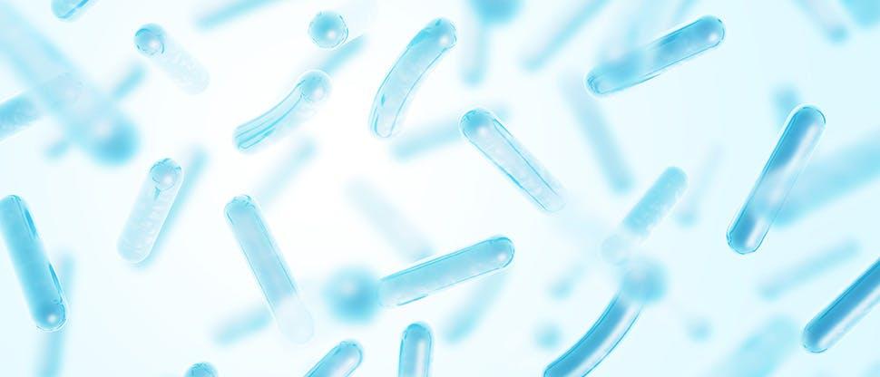 probiotics-lactobacillus