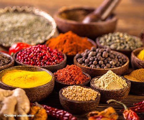 Raw Indian spices in earthen pots