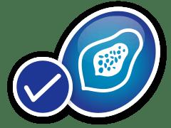 Ícone de uma fruta