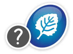 Ícone de uma folha