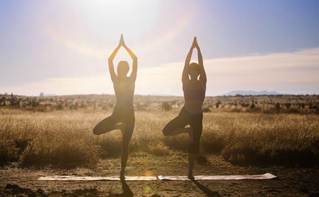 To kvinder dyrker yoga udenfor