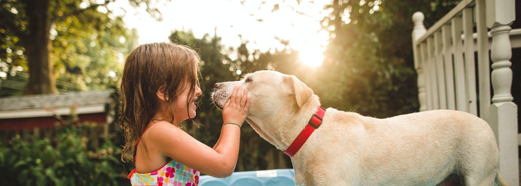 Una niña en una piscina acaricia a un perro