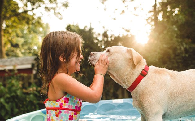 Anak Perempuan Bermain dengan Anjing di Samping Kolam Renang