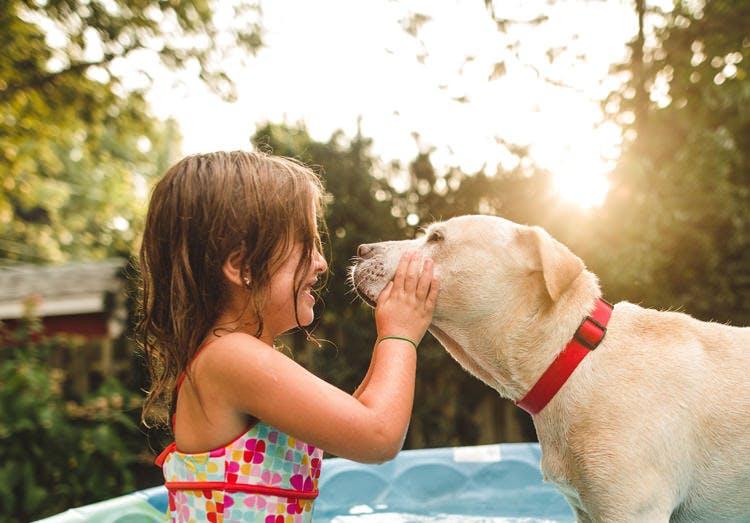 Bé gái mặc đồ bơi chơi với chó