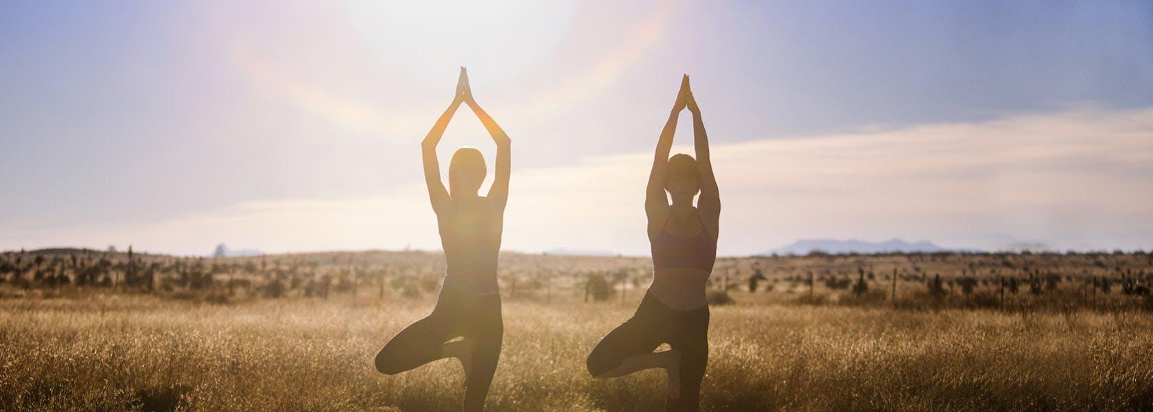 Hai phụ nữ trong tư thế yoga cái cây trên đồng