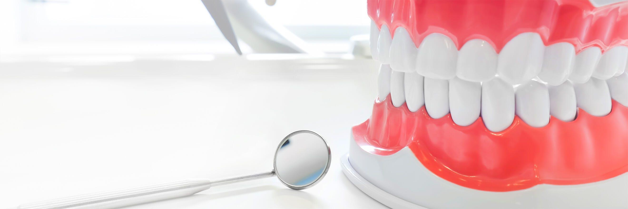 Hammaslääkärin peili muovisten malli-ikenien vieressä