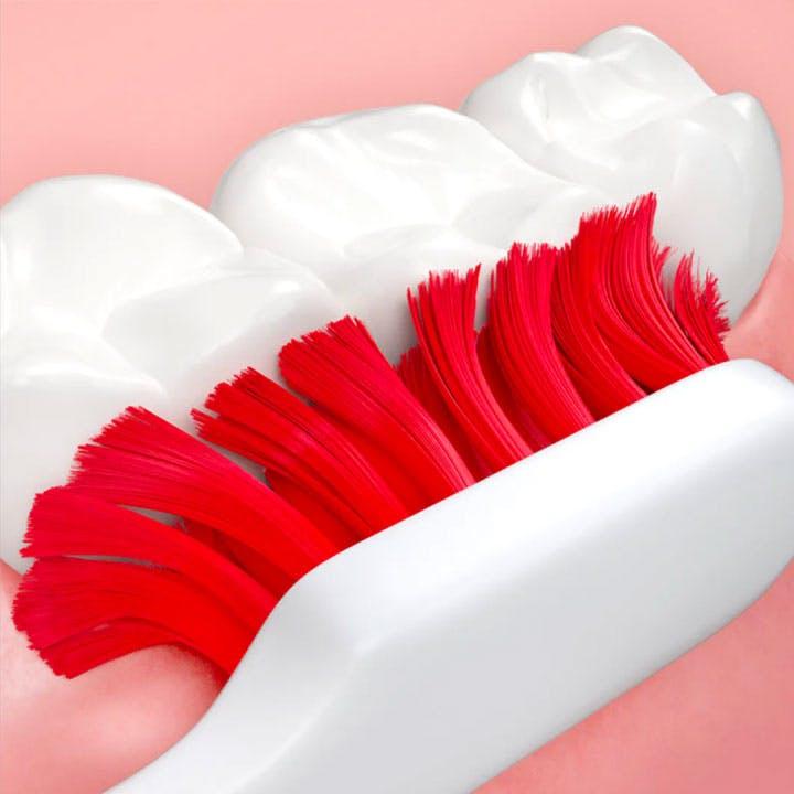 brushing teeth close-up