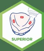 corega_peru_adhesivos_superior_gsk